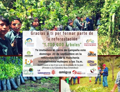 Campaña de Reforestación 2018